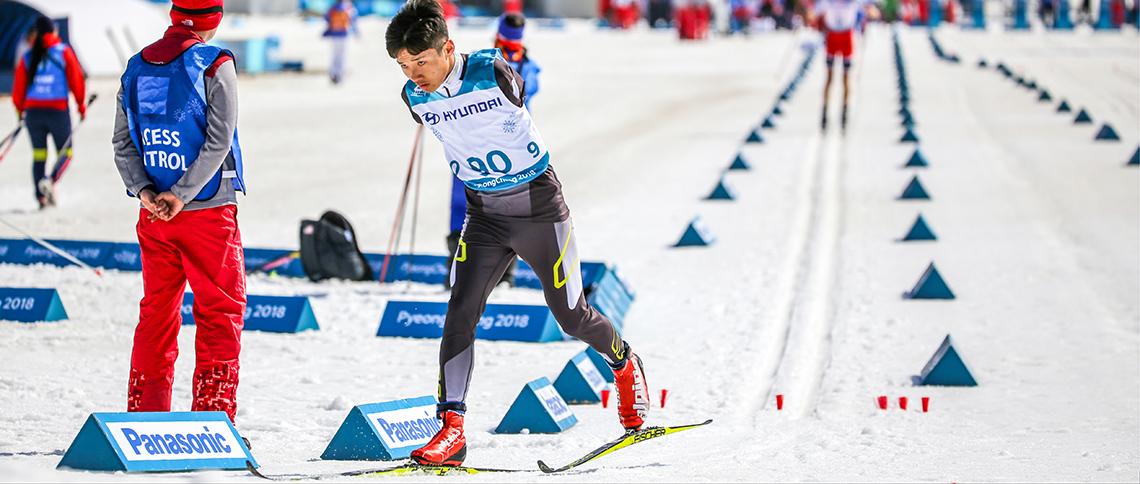 Bežecké lyžovanie stock image