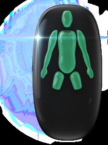 Ausencia de las piernas (desde la mitad del muslo).