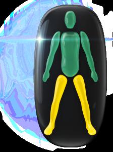 Mouvement et coordination légèrement limités des deux jambes.