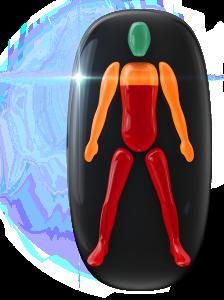 Movimiento moderadamente limitado de los hombros y de los brazos, y muy limitado desde el tórax hasta la parte inferior del tronco y de las piernas.