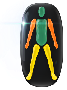 Movement and coordination affected in all four limbs; to a moderate degree in the arms and a low degree in the legs.